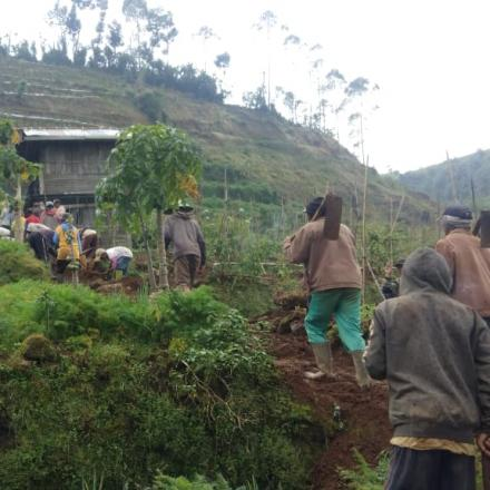 Album : Padat Karya Tunai Desa